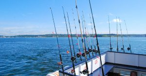 Visit These Top 4 Places to Go Fishing in Hampton, VA
